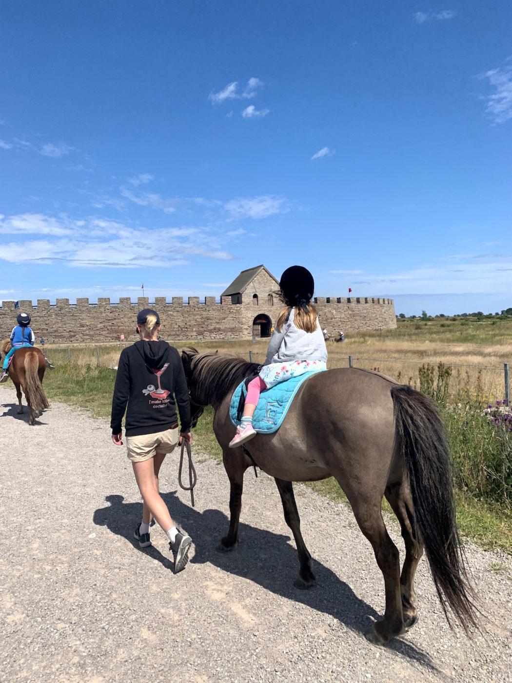 Islandshäst vid Eketorps Borg är en hit för alla barn på Öland.